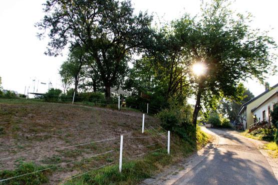 Kirschhofer Tierarche - Heusweiler Saar
